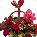 LUXURY AMARYLLIS BASKET - £65