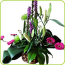 Flower Arrangements - Shotley Florist Ipswich